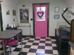 My dog groom shop