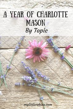 I've organized Charlotte Mason's text by topic and I'm sending these mini-eBooks your way during the 2017-2018 school year!