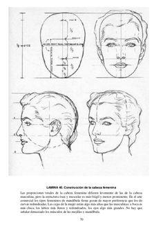 70 LAMINA 40. Construcción de la cabeza femenina Las proporciones totales de la cabeza femenina difieren levemente de las ...