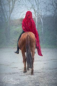 Seinen ganz eigenen Weg zu gehen, klingt manchmal so einfach... Und fällt einem doch so schwer! Er erfordert oft sehr viel Mut und ist nicht immer der einfachste, aber am Ende der der glücklich macht! #pferde #pferdeshooting Horse Pictures, Community, Horses, Pure Products, Group, Board, Red, Inspiration, Simple