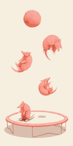 Jillian Nickell - Trampolining armadillos