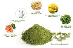Superfood Moringa- great natural energy boost