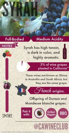 Learn a bit about #Syrah. #shiraz #wine www.winewizard.co.za