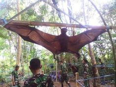 The Peruvian army has captured something truly horrific, a human size bat, this animal as you can see in the photograph appears to be a giant bat. Apparently this animal has been frightening locals living near the amazon jungle bordering Peru. Recent reports state that this animal attacked several people walking through the jungle and elsewhere in Latin America.