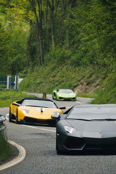 Lambo Line-up. 50 yr Anniversary of Lamborghini