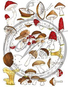 **** Vilda Stamps Miniature Mushrooms