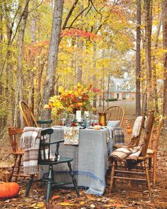 Harvest Season, Fall Season, Slow Living, Art Of Living, Hygge, Fall Picnic, Southern Ladies, Autumn Aesthetic, Outdoor Furniture Sets