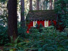Forest Cottage Oregon