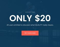 Fildisi - Responsive Multi-Purpose WordPress Theme price