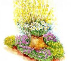 Схема весеннего цветника кустарник — форзиция (1), которая ранней весной, до распускания листвы, цветет ярко-желтыми цветами. Красоте этого кустарника подчинены яркие хохлатки – желтые прицветниковые (2) и фиолетовые плотные (4) – высаженные у его подножия. Планировка цветника предусматривает небольшой «сюрприз», то есть некую необычность – на переднем плане в «вазоне» из старого пня, заполненного землей, расцветает букет нежных нарциссов.