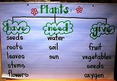Have-Need-Give Anchor Chart @Brooke Rane Rane Rane Saffle dont you do a first grade plants unit in 1st grade?