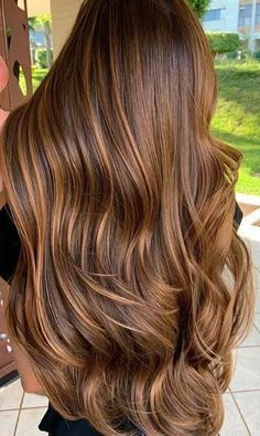 Trendy Hair Color & Balayage : chestnut brown hair color Trendy Hair C Brown Hair With Blonde Highlights, Brown Hair Balayage, Brown Ombre Hair, Ombre Hair Color, Hair Color Balayage, Brown Hair Colors, Hair Highlights, Blonde Balayage, Color Highlights