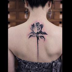 Exquisite spine rose.