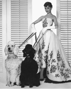 Legendary fashion designer Hubert de Givenchy has passed away at 91 years old. The founder of Givenchy was best known for his work with…