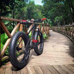 Weet ff geen bruggetje. Surly Bike, Fat Bike, Four Wheel Drive, Steve Mcqueen, Bike Accessories, Bicycles, Dream Cars, Badass, Boat