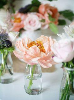 Emily Quinton's Flower Photography Tips | west elm