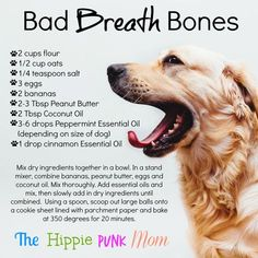 DIY Bad Breath Bones for your pup or dog. Contain essential oils, be sure to modify more or less depending on your dog's weight.