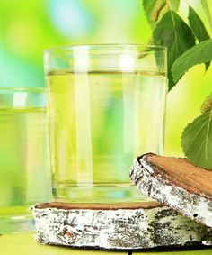 Birch buds, bark, leaves and sap are the mainly used parts of the birch tree with potential therapeutic applications. Read more on health benefits of birch.
