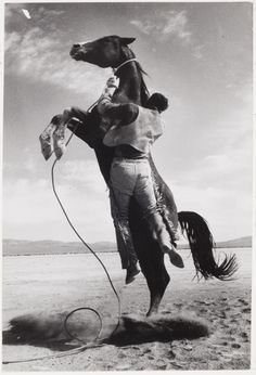 Stuntman with Mustang on the set of The Misfits, 1960  Ernst Haas