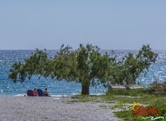 Liviko Apartments offers comfortable accommodation in Fragokastello in Sfakia, Chania and features rooms and apartments for rent in Sfakia, Chania, Crete Crete Greece, Apartments, Balcony, Explore, Mountains, Travel, Viajes, Balconies, Destinations