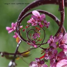 More Faery Cherry Tree by Leslye A. Ward Lightbender Studio