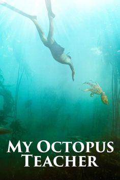 Professor, Best Documentaries On Netflix, Common Sense Media, Version Francaise, Building For Kids, Streaming Vf, France, Documentary Film, Octopus