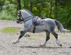 """Silver Fox"" CM Copperfox Celtic Warrior by Mindy Berg."