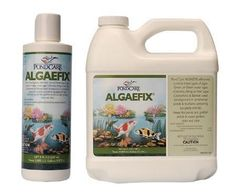 """Algaefix 8Oz (Algea Control) Case Pack 12 - 903279 by Mars Fishcare. $219.56. Algaefix 8Oz - AlgaeFix is an effective, EPA registered selective algae-control product that solves algae problems. Effectively controls green water blooms, string algae and blanketweed. Keeps ornaments fountains or waterfalls clean and clear. Use in ponds, fountains, and waterfalls. Safe for use with live plants and fish. Available in 8 oz., 16 oz., 1 gal., 64 oz., and 32 oz."""" Case Pack 12 Plea..."""
