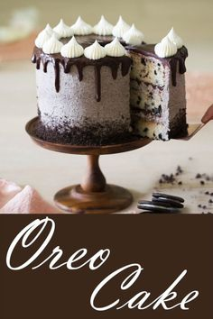 Oreo Cake Oreo Cake,This Takes the Cake! This Oreo cake has all the crunch, creaminess and chocolate you could desire! The crushed cookies in the buttercream are basically magic. Mug Recipes, Best Cake Recipes, Cupcake Recipes, Baking Recipes, Cookie Recipes, Dessert Recipes, Easy Oreo Cake Recipe, Oreo Desserts, Health Desserts