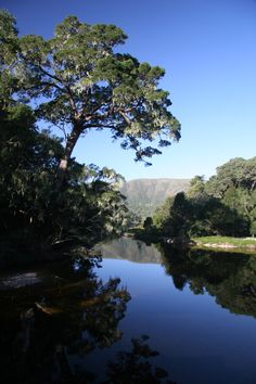 Natures Valley, Western Cape South Africa