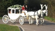 Horse Drawn Wedding Carriages, Horse and Carriage, Kent, Essex . Horse And Carriage Wedding, Horse Carriage Rides, Horse Wedding, Wedding Pics, Dream Wedding, Wedding Dresses, Wedding Transportation, Princess Carriage, Horse And Buggy