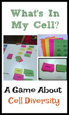What's In My Cell? A game about cell diversity.