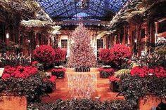 Longwood Gardens Christmas Decorations Ideas Uk, Usa