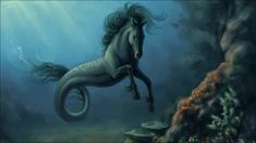 """The kelpie is a supernatural water horse from Celtic folklore that is believed to haunt the rivers and lochs of Scotland and Ireland. Very Interesting """"creature."""" Look it up on Wiki at Kelpie horse. Fantasy Kunst, Fantasy Art, Magical Creatures, Sea Creatures, Kelpie Horse, Legends And Myths, Celtic Mythology, Greek Mythology, Mermaid Mythology"""