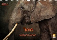 Tiere - wild und schön - CALVENDO Kalender von Claudia Möckel / Lucy Liu - #calvendo #calvendogold #kalender #fotografie #tiere #wildlife