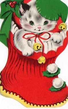 kitten in flocked stocking Christmas card