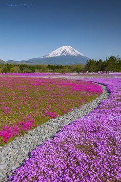 Fuji-san, Japan