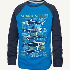 Shark Species Raglan T-Shirt at Fat Face