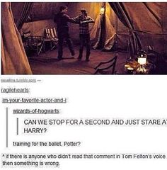 Harry Potter and Tom Felton - Harry, Hermione and Draco Harry Potter Jokes, Harry Potter Fandom, Drarry, Dramione, Ravenclaw, Slytherin Pride, Sherlock, Must Be A Weasley, No Muggles