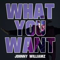 What You Want by Johnny Williamz on SoundCloud