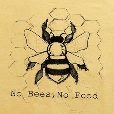 No Bees, No Food think about this before you swat at a bee! I Love Bees, My Love, Bee Friendly, Bee Art, Bee Happy, Save The Bees, We Are The World, Busy Bee, Bees Knees