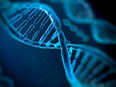 With DNA Testing, Suddenly They Are Family