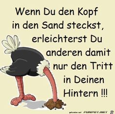 wenn du den Kopf in den Sand steckst - Aida Biermann Head In The Sand, Truth Of Life, Clever Quotes, Man Humor, Proverbs, Cool Words, Slogan, Positive Quotes, Life Quotes
