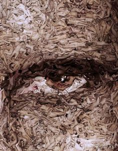 Spencer Tunick ~ photographer  This pic is composed COMPLETELY from statigically placed naked bodies; incredible!