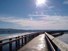 Walk  Bridge .