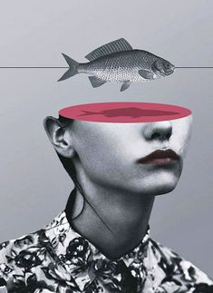 Some surreal photo collages and mixed media artworks by Matthieu Bourel. Matthieu Bourel is a French artist currently living and working in Berlin, Collage Foto, Art Du Collage, Surreal Collage, Mixed Media Collage, Surreal Art, Digital Collage, Fish Collage, Digital Art, Photo Collages