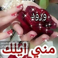 Photo by alprince ali Good Morning Arabic, Good Morning Picture, Morning Pictures, Arabic Love Quotes, Arabic Words, Love Heart Images, Mubarak Images, Tumblr Pages, Happy Birthday Candles