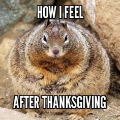 How I feel After Thanksgiving. HAPPY THANKSGIVING (October 12) CANADIANS!