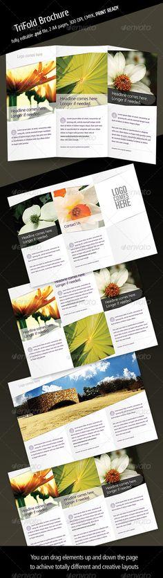 Tri Fold Brochure V3 - GraphicRiver Item for Sale