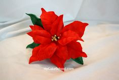 How to Make a Gum Paste Poinsettia-video